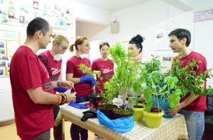 voluntarii SDL Cluj la FIV